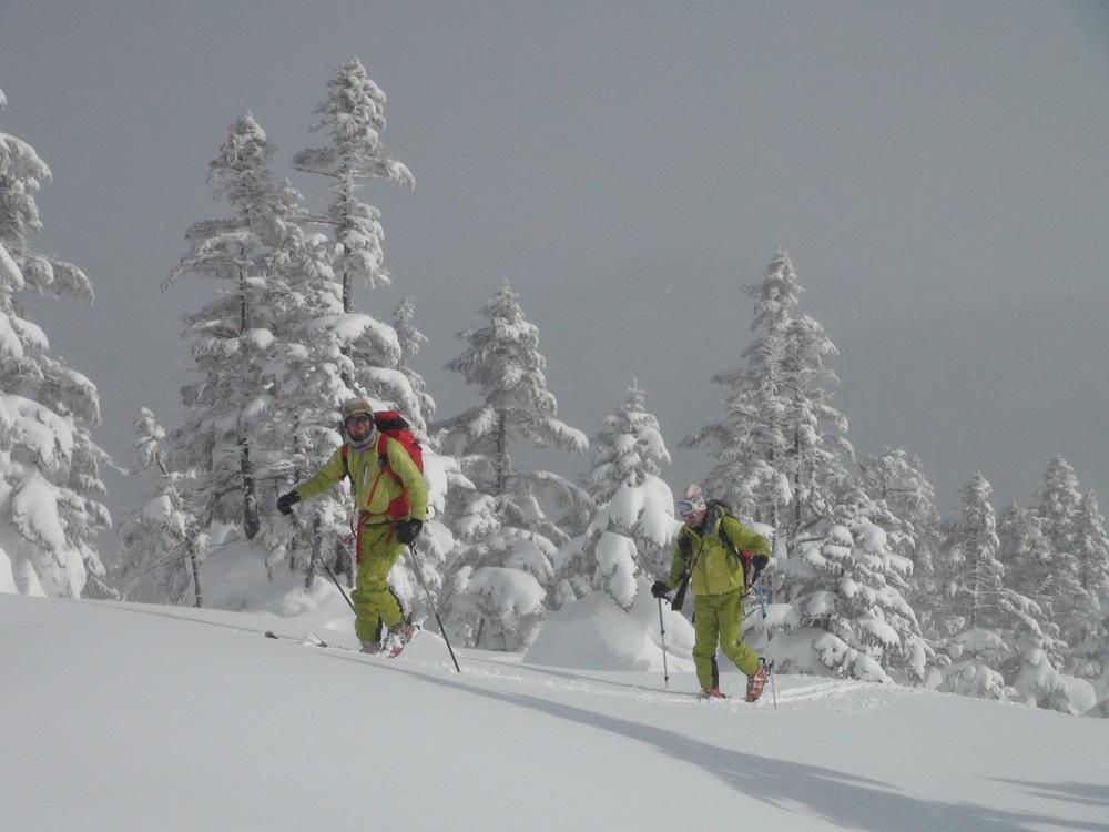 スキーで森へ行こう3