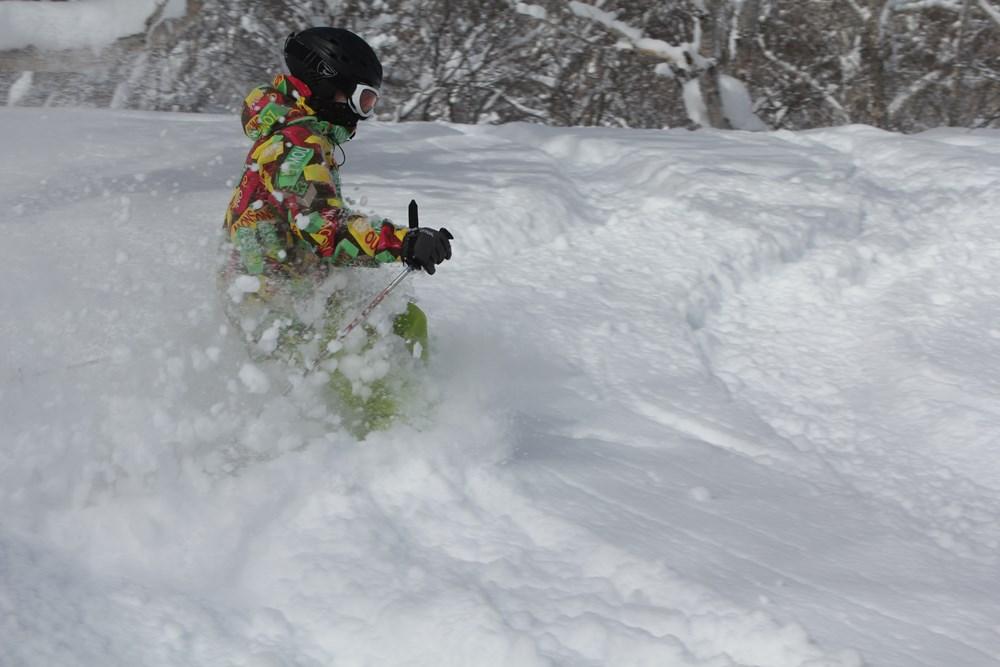 スキーで森4