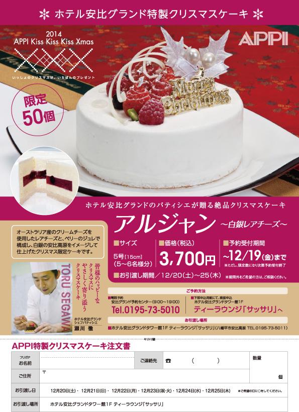 2014APPIクリスマスケーキA4
