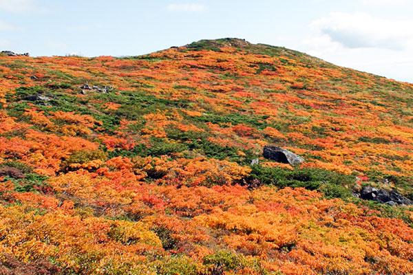 三ツ石山山頂付近の紅葉