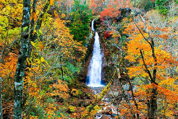 紅葉の七滝