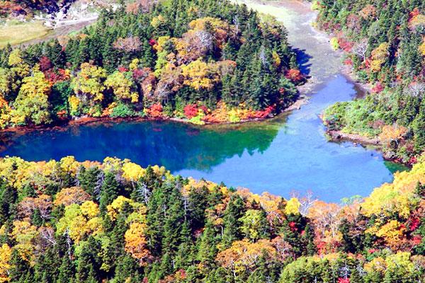 御苗代湖の紅葉