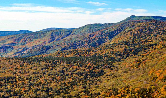 前森山山頂から見た紅葉の八幡平