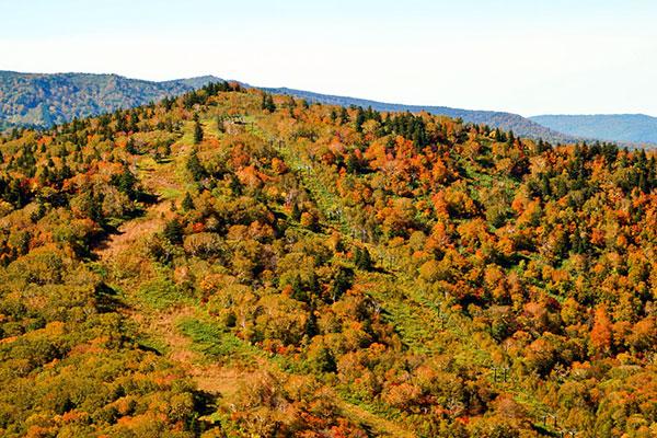 紅葉の西森山