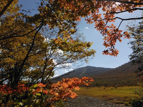 紅葉と前森山DSCF5658