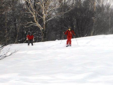 森スキー01