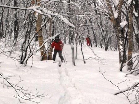 森スキー04