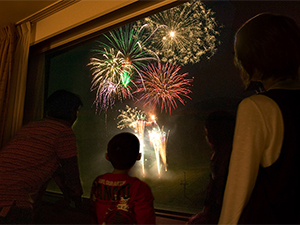 img_lk_fireworks300