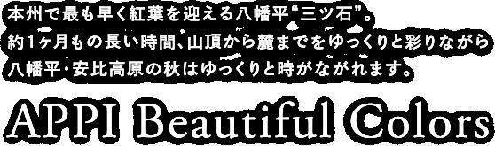 """APPI Beautiful Colors 本州で最も早く紅葉を迎える八幡平""""三ツ石""""約1ヶ月もの長い時間、山頂から麓までをゆっくりと彩りながら八幡平・安比高原の秋はゆっくりと時がながれます。"""