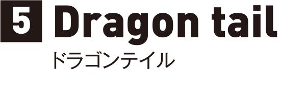 5 Dragon tail ドラゴンテイル