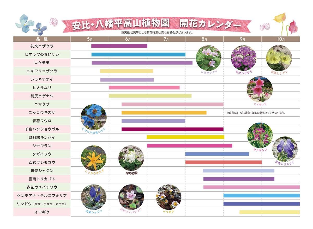 安比・八幡平開花カレンダー
